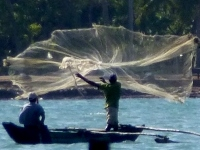 Lagoon Fishermen at work - Welcome to Batticaloa