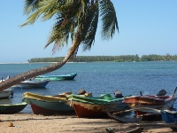 Sinna Uppodai Lagoon - Welcome to Batticaloa