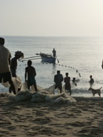Fishermen at work - Welcome to Batticaloa