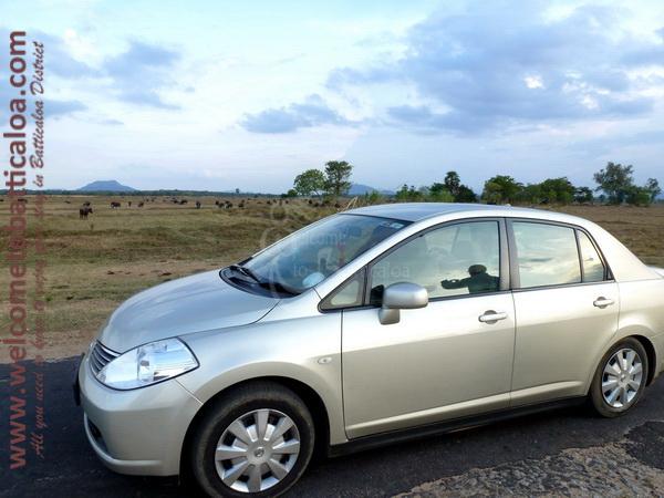 Amara Tours 01 - Sri Lanka - Chauffeur Guide Lecturer