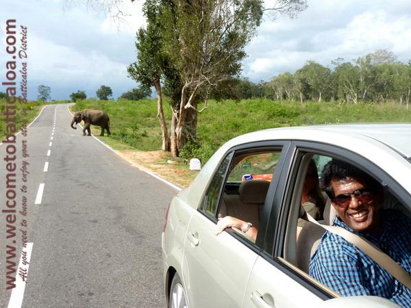 Amara Tours 08 - Sri Lanka - Chauffeur Guide Lecturer
