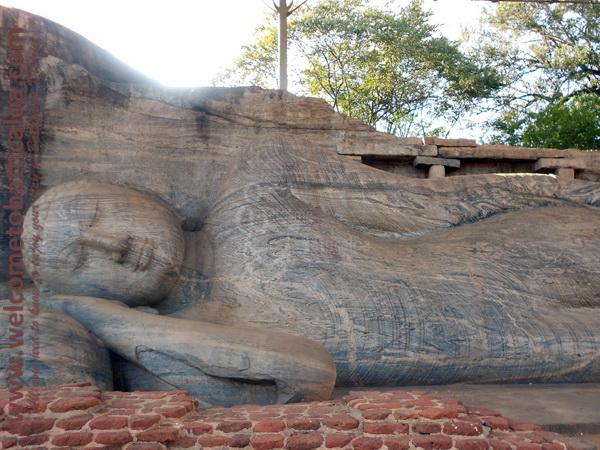 Amara Tours 11 - Sri Lanka - Chauffeur Guide Lecturer