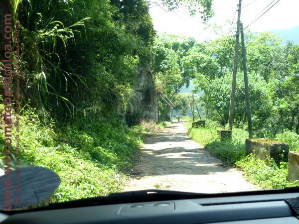 Amara Tours 17 - Sri Lanka - Chauffeur Guide Lecturer
