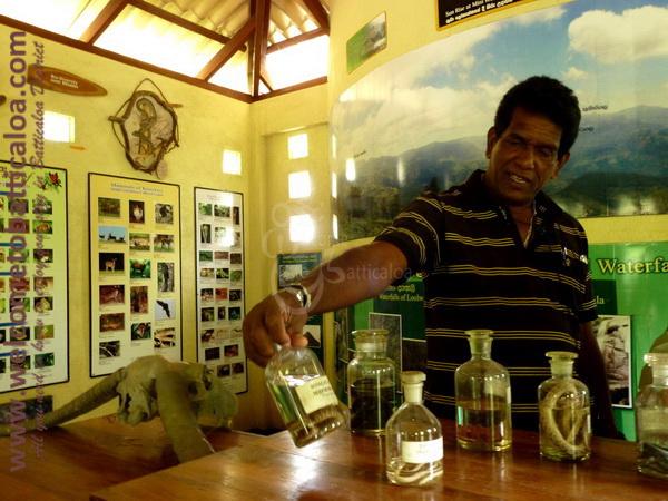 Amara Tours 21 - Sri Lanka - Chauffeur Guide Lecturer