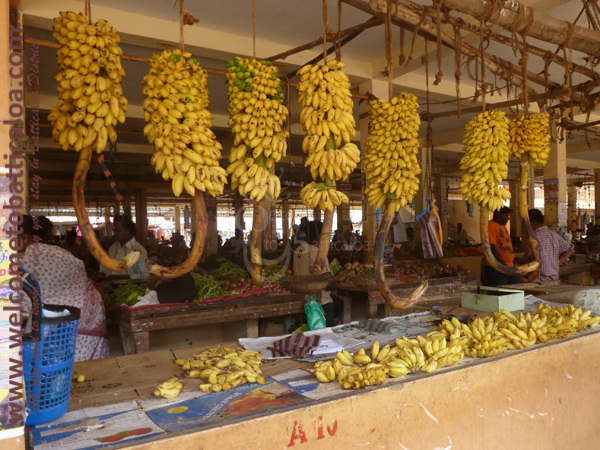 Batticaloa Market 01 - Visits & Activities - Welcome to Batticaloa