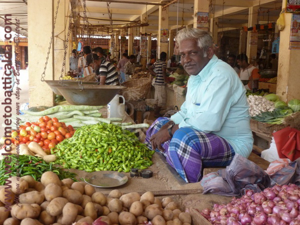 Batticaloa Market 04 - Visits & Activities - Welcome to Batticaloa