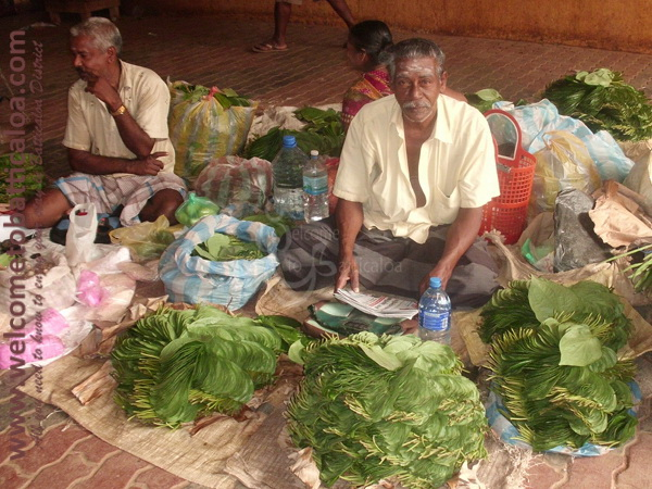 Batticaloa Market 06 - Visits & Activities - Welcome to Batticaloa