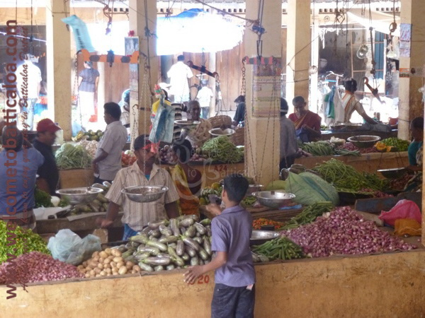 Batticaloa Market 13 - Visits & Activities - Welcome to Batticaloa