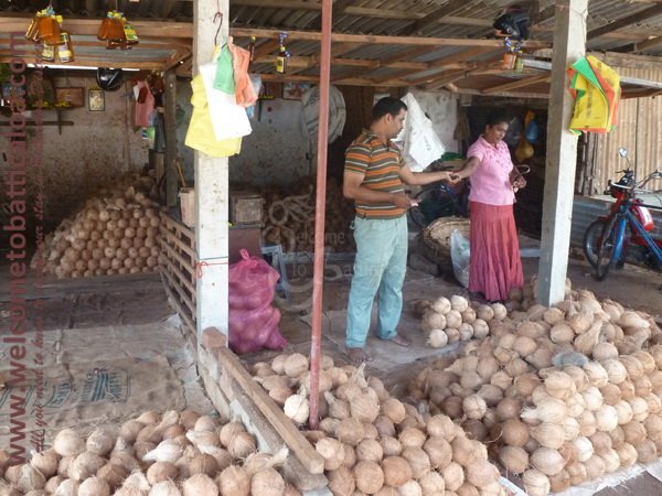 Batticaloa Market 33 - Visits & Activities - Welcome to Batticaloa