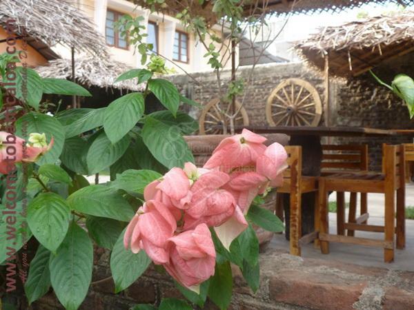 Cafe Chill 09 - Batticaloa Cafe - Welcome to Batticaloa