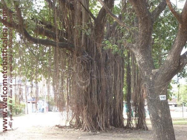 Koddamunai 23 - Visits & Activities - Welcome to Batticaloa