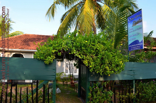 Olive Green Resort 03 - Kallady Guesthouse - Welcome to Batticaloa