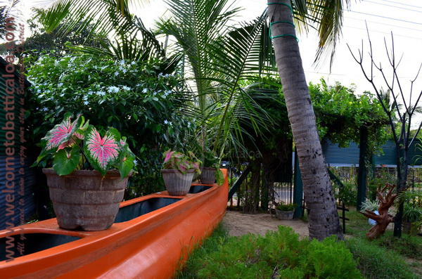 Olive Green Resort 07 - Kallady Guesthouse - Welcome to Batticaloa