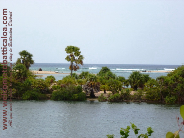 Palameenmadu Environmental Centre & Ecopark 20 - Visits & Activities - Welcome to Batticaloa