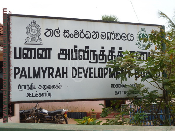 Palmyrah Development Board Outlet 01 - Visits & Activities - Welcome to Batticaloa