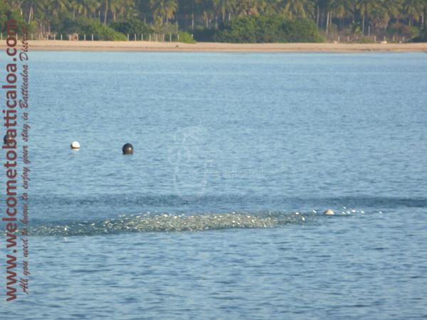 Passikudah & Kalkudah Beaches 15 - Visits & Activities - Welcome to Batticaloa