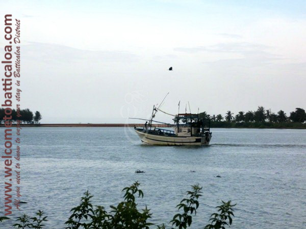 Sinna Uppodai Lagoon 06 - Visits & Activities - Welcome to Batticaloa
