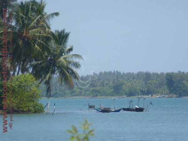 Sinna Uppodai Lagoon 11 - Visits & Activities - Welcome to Batticaloa