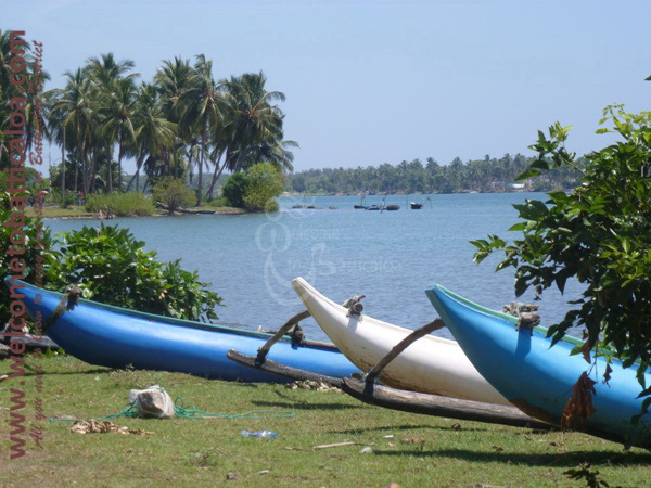 Sinna Uppodai Lagoon 18 - Visits & Activities - Welcome to Batticaloa