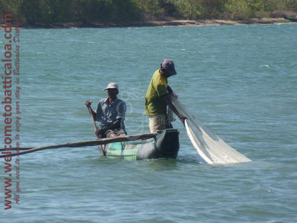 Sinna Uppodai Lagoon 20 - Visits & Activities - Welcome to Batticaloa