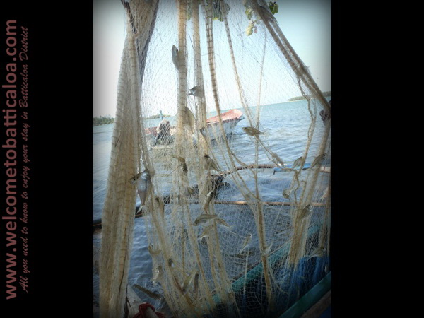 Sinna Uppodai Lagoon 21 - Visits & Activities - Welcome to Batticaloa