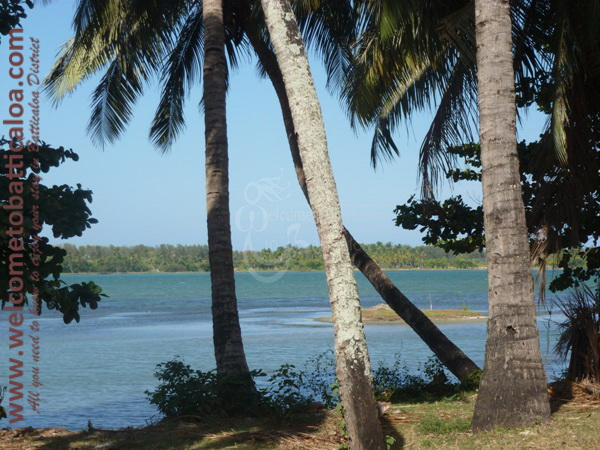 Sinna Uppodai Lagoon 26 - Visits & Activities - Welcome to Batticaloa