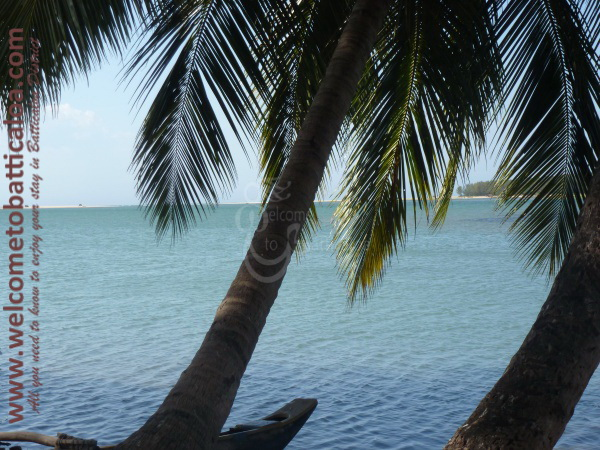 Sinna Uppodai Lagoon 28 - Visits & Activities - Welcome to Batticaloa
