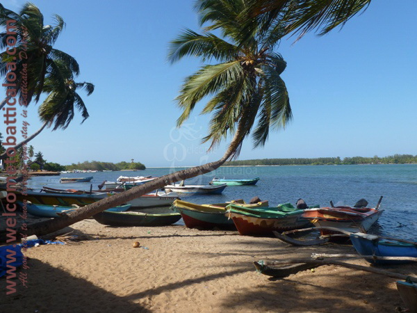 Sinna Uppodai Lagoon 29 - Visits & Activities - Welcome to Batticaloa
