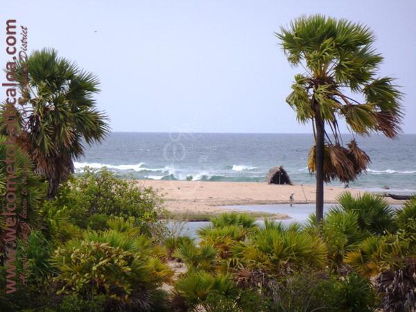 Sinna Uppodai Lagoon 34 - Visits & Activities - Welcome to Batticaloa