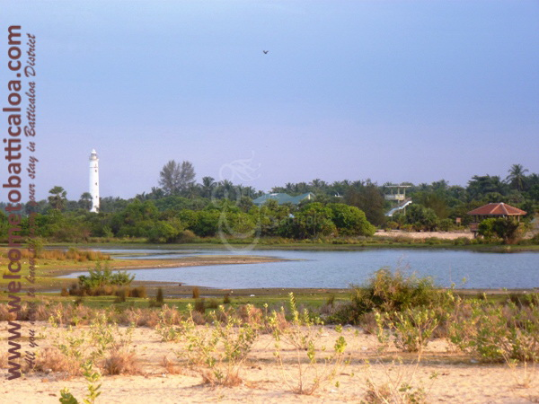 Sinna Uppodai Lagoon 36 - Visits & Activities - Welcome to Batticaloa