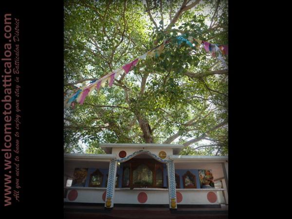 Sri Mangalarama Buddhist Temple 04 - Welcome to Batticaloa