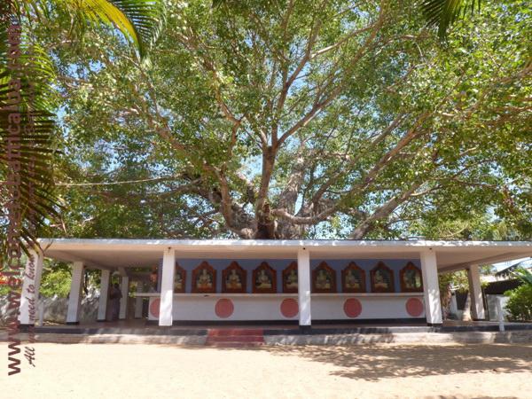 Sri Mangalarama Buddhist Temple 14 - Welcome to Batticaloa