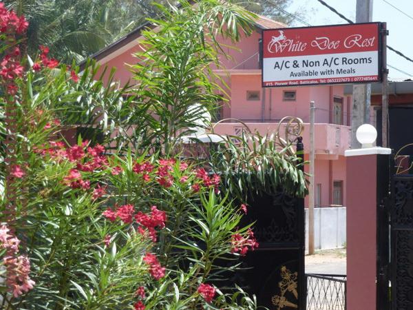 White Doe Rest 02 - Batticaloa Guesthouse - Welcome to Batticaloa