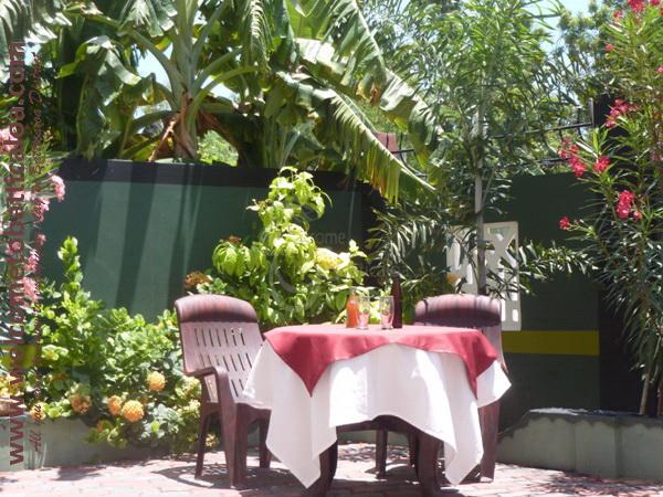 White Doe Rest 17 - Batticaloa Guesthouse - Welcome to Batticaloa