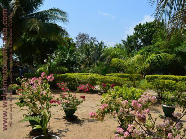 Nandanawam Guesthouse 11 - Passikudah Kalkudah Guesthouse  - Welcome to Batticaloa