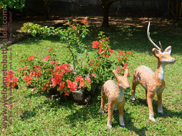 Nandanawam Guesthouse 13 - Passikudah Kalkudah Guesthouse  - Welcome to Batticaloa