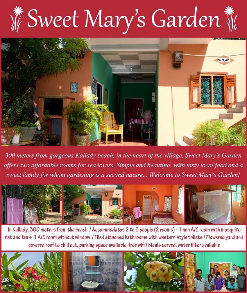 Homestays in Batticaloa - Kallady - Sweet Mary's Garden