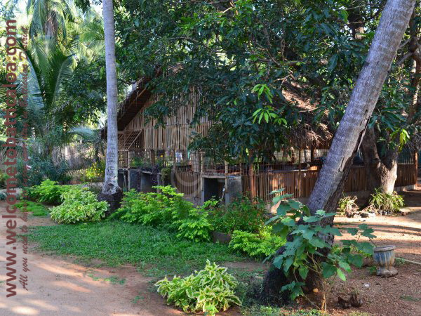 Vasuki Guest House 15 - Passikudah Guesthouse - Welcome to Batticaloa