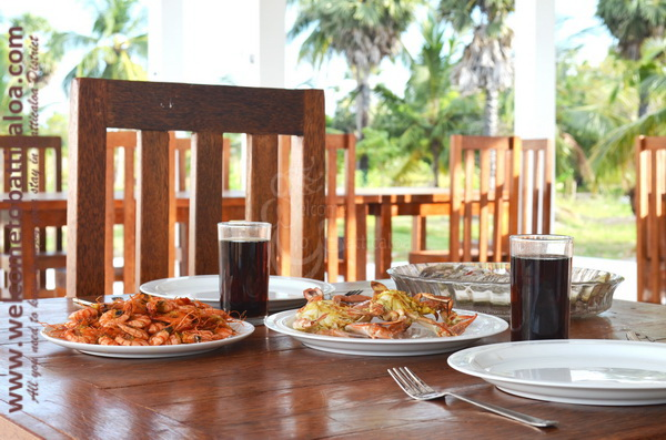 Eco Paradise Resorts - Passikudah - Welcome to Batticaloa - 21