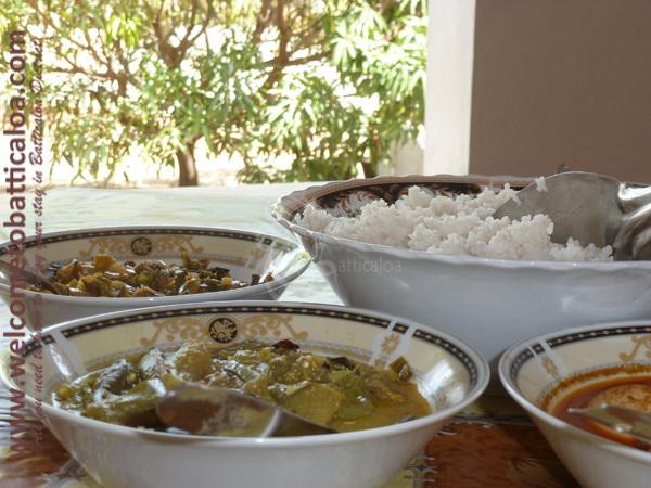 The New Land 28 - Kalkudah Guesthouse & Restaurant - Welcome to Batticaloa