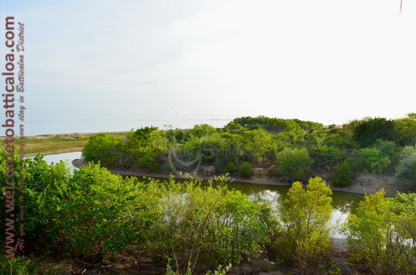 15 - Giman Free Beach Resort - Welcome to Batticaloa Hotel