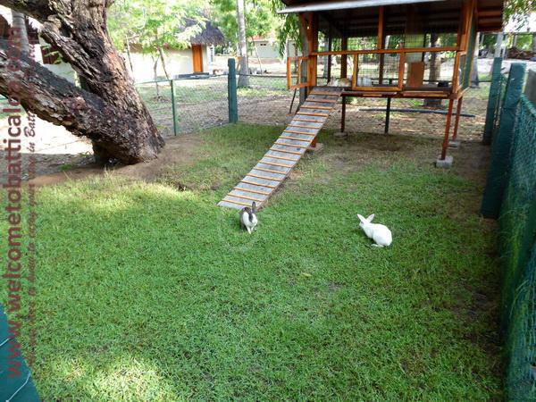 23 - Riviera Resort - Welcome to Batticaloa