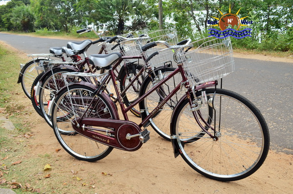 02 - Bicycle rental Batticaloa - East N' West on Board (2)