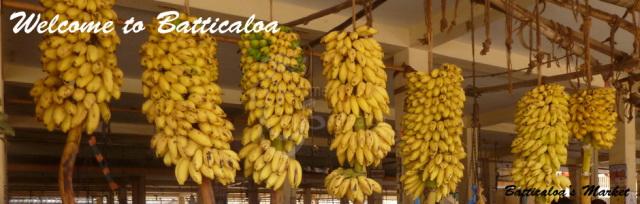 34 - Bananas Batti Market
