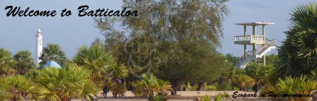 53 - Ecopark in Palameenmadu 2