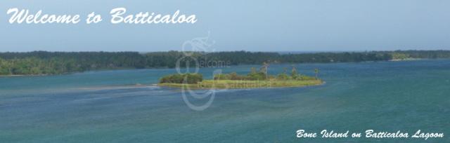58 - Bone Island