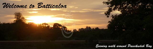 66 - Evening walk Passikudah